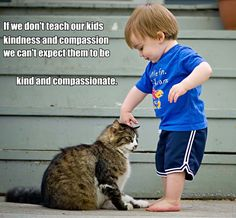 Children and cats can be wonderful companions for each other. These relationships do not just happen by accident though. You need to prepare educate and set up an environment that is both kid-safe and cat-safe. Cute Small Drawings, Animal Captions, Precious Children, All About Cats, Creature Feature, Compassion, Kids Playing, Cats And Kittens, Cute Cats