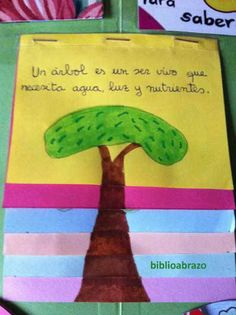 LibroCONbolsillos