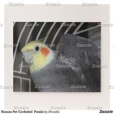 Kansas Pet Cockatiel  Puzzle
