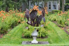 This beautiful urn is planted with purple alocasia and chartreuse trailing lysimachia.  The tiger lily gardens have been fantastic this year, attracting many butterflies and hummingbirds.