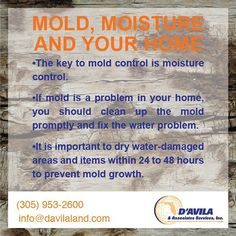 D'avila  Mold Moisture and your home! #facts #safety #davilaland #homeinspection