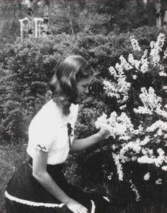 Sylvia Plath •