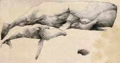 Flying sperm whale and bonus zeppelin by Achah on DeviantArt