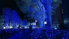 3 d animated christmas lights - Searchya - Search Results Yahoo Canada Image Search Results