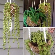 The crochet string of pearls plant was simple to make! Here's how I did it: 💚 I used a crochet pompom edging technique - there are lots of… Crochet Flower Patterns, Crochet Flowers, Crochet Designs, Crochet Toys Patterns, Loom Patterns, Crochet Home, Cute Crochet, Crochet Art, Crochet Motif