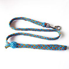 Dog leash / 550paracord
