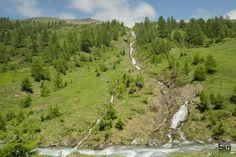 Streams of water - Streams of water