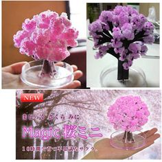 I found 'Mini Magic Sakura Tree (Cherry Blossom)' on Wish, check it out! New Crafts, Crafts To Sell, Paper Crafts, Japanese Tree, Japanese Paper, Blooming Trees, Blooming Flowers, Sakura Cherry Blossom, Cherry Blossoms