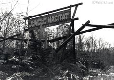 Abandoned (Jungle Habitat West Milford, New Jersey . Abandoned Mansions, Abandoned Buildings, Abandoned Places, Abandoned Theme Parks, Abandoned Amusement Parks, West Milford, Greenwood Lake, Park Around, New Jersey