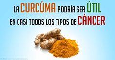 La cúrcuma tiene una larga historia de usos medicinales en la medicina tradicional China así como también en la medicina Aryuvédica. http://articulos.mercola.com/sitios/articulos/archivo/2015/05/04/beneficios-de-la-curcuma-turmeric.aspx