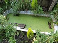 I just love the Idea that someone as as reused there bath to make a pond for wild life