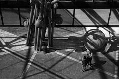 Pinterest Tumblr, Naples, Stationary, Bike, Bicycle, Bicycles