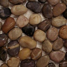 """Polished Natural Mix Pebble Tile 12"""" x 12""""Interlocking Tile Stone Size: 3/4"""" to 2 1/2"""" Thickness: Appx 1/2"""""""