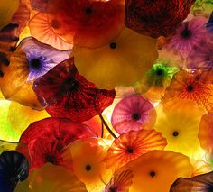 Chihuly glass ceiling.