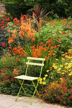 Metal chair by hot coloured border with Crocosmia, Canna, Dahlia and Kniphofia at Wollerton Old Hall, Shropshire - © Clive Nichols/GAP Photo. Small Flower Gardens, Small Flowers, Summer Flowers, Yellow Flowers, Colorful Garden, Tropical Garden, Back Gardens, Outdoor Gardens, Imperata Red Baron