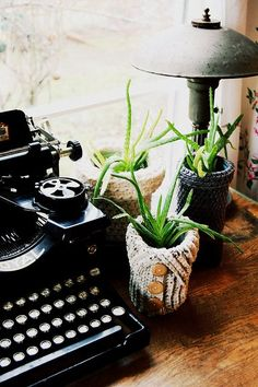 old typewriter, small plants with sweater covers - eclectic home office by Lola Nova Grannies Crochet, Autumn Interior, Cute Blankets, Old Sweater, Knit Sweaters, Cardigans, Vintage Typewriters, Yarn Bombing, Yarn Projects