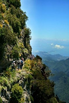 Challenging, but also very rewarding. Welcome to the beautiful Madeira.