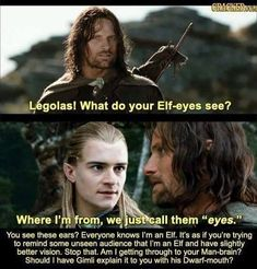 "Where I'm from, we just call them ""eyes."" Should I have Gimli explain it to you with his Dwarf-mouth? Movie Memes, Funny Memes, Hilarious, Aragorn, Gandalf, Legolas And Gimli, Lotr, O Hobbit, Famous Movies"