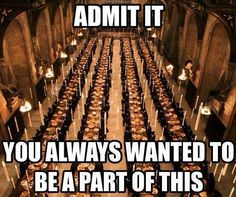 Check it out Potter Heads! 125 of the Best Harry Potter Memes Harry Potter Fiesta, Harry Potter Puns, Harry Potter Universal, Harry Potter World, Harry Potter Funny Quotes, Harry Potter Fun Facts, Hogwarts, Jarry Potter, Scorpius And Rose