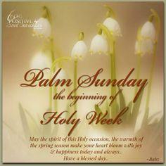 Palm Sunday the beginning of Holy Week...