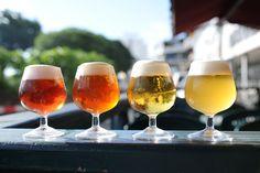 Beer tasting. 地ビールの飲み比べ