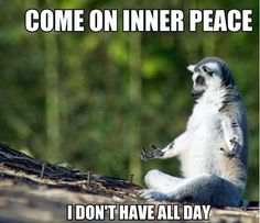 Image result for come on inner peace i don t have all day