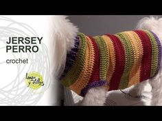 Tutorial Jersey Para Perro Crochet o Ganchillo, My Crafts and DIY Projects Dog Sweater Pattern, Crochet Dog Sweater, Crochet Gifts, Free Crochet, Knit Crochet, Crochet Dog Clothes, Pet Clothes, Knitting Videos, Crochet Videos