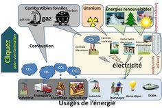 explication complète et détaillée: photosynthèse/respiration/énergie/cycle dioxyde de carbone...