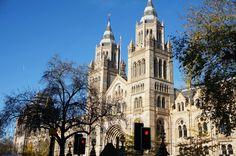 Quatre musées à visiter à Londres : British museum, National Gallery, Natural History Museum, Museum of London.