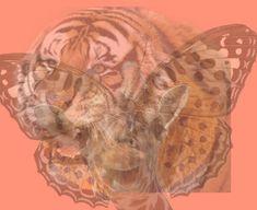 Személyiségteszt! Amelyik állatot hamarabb észreveszed, kiderül, hogy milyen ember vagy! Alább egy ábrát láthatsz, amelyben különböző állatok fotói vannak egymásra helyezve. Nézz rá erre a képre, és ha elsőre észrevettél egy állatot, akkor annak alapján megismerheted Painting, Animals, Art, Art Background, Animales, Animaux, Painting Art, Kunst, Paintings