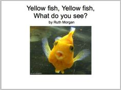 Yellow Fish, Yellow Fish; What do you see?  Boardmaker book and icons