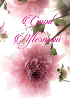 Good afternoon sister and all. Have a relaxing afternoon xxx❤❤❤😘🍧 Good Morning Sister, Good Morning Cards, Good Morning Flowers, Good Morning Messages, Good Morning Good Night, Morning Wish, Gud Afternoon Images, Afternoon Messages, Good Afternoon Quotes