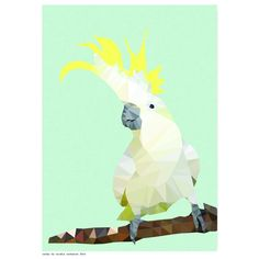 Geometric cockatoo art print | hardtofind.