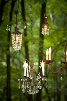 Chandelier in the Forest Forest Wedding, Woodland Wedding, Chandelier Lighting, Chandeliers, Decoration Originale, My Secret Garden, Secret Gardens, Faeries, Outdoor Lighting