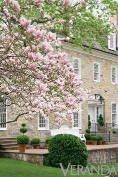 Dream Home: Windows | The Style Emporium | double-hung