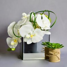 Large artificial flower arrangemens are enough to catch the eye in any room, but smaller scale arrangements can be just as breathtaking, especially when they use such beautiful flowers like artificial orchids! Large Artificial Flowers, Artificial Orchids, White Orchids, White Flowers, Beautiful Flowers, White Flower Arrangements, Artificial Flower Arrangements, Cube, Luxury