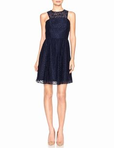 Paneled Lace Overlay Dress   Women's Dresses   THE LIMITED
