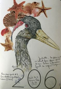 Color pencils and collage. Crane, Colored Pencils, Sea Shells, Rooster, Collage, Artist, Painting, Colouring Pencils, Collages