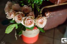 Rose /flowers