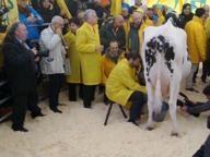 La #politica #agricola mette in difficoltà i bilanci aziendali. #bioeticonet affianca le aziende che lottano sui mercati. Un esmepio dal mondo zootecnico: #Quote #latte addio, #allevatori a #Roma «Sopravvissuta 1 #stalla su 5» - Corriere.it