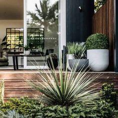 Looking For Easy Landscaping Tips? Cool Landscapes, Easy Landscaping, Landscaping Inspiration, Home And Garden, Backyard Design, Front Garden, Garden Design