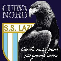 Ss Lazio, Football Fans, Sport, Dandy, Soccer, Actors, Places, Sports, Art