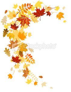 Autumn leaves swirl Royalty Free Stock Vector Art Illustration
