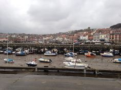Busy scarborough