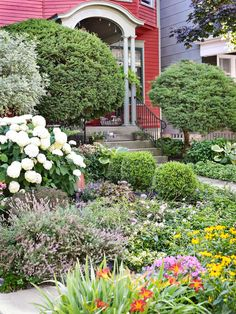 Garden Designs Ideas 2018 : 'Annabelle' hydrangea, lavender, and gaura reflect the garden's white-purple-pink color scheme. Hot hues are confined to the hellstrip. Cottage Front Yard, Front Yard Decor, Front Yard Landscaping, Landscaping Ideas, Decking Ideas, Annabelle Hydrangea, Specimen Trees, Vegetable Garden Design, Back Gardens