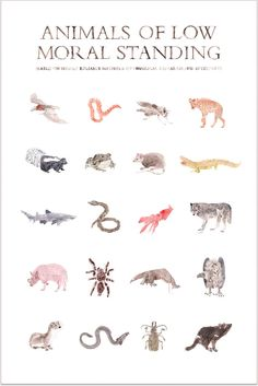 Animals of Low Moral Standing Print. $29.00, via Etsy.    Hilarious!  I think I'm getting these for Rylan's room.