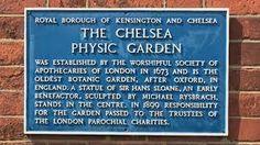 Image result for Chelsea School of Botanic Art Kensington And Chelsea, Letter Board, Physics, London, Lettering, School, Image, Art, Art Background