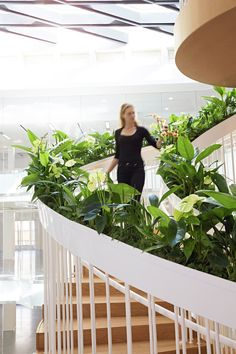 living-staircase-fresh-plants-on-balustrade