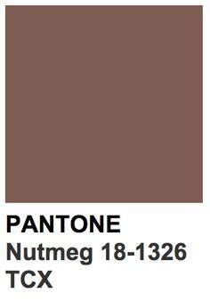 Bildergebnis für pantone farben nutmeg