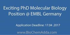Exciting PhD Molecular Biology Position @ EMBL Germany
